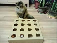 katzenspielzeug selber basteln diy peek and play box for cat best cat