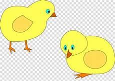 Ayam Gambar Ayam Vektor Png