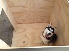 husky dog house plans siberian husky dog house plans