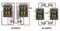 bi wire ps audio