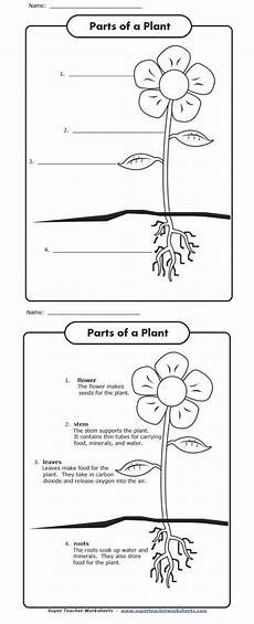 parts of the earth printable worksheets 14451 celebrate earth day with this worksheets label the parts of the plant shown in the picture and