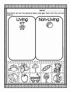 living vs non living sort 2 worksheets by cupcakes and craftastrophes