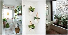 Aesthetic Bathroom Decor Ideas by 30 And Beautiful Hanging Bathroom Plants Decor