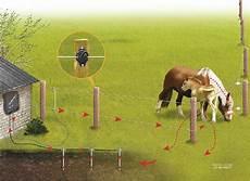 clotures electriques pour animaux choisir sa cl 244 ture 233 lectrique pour animaux chien