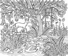 nature coloring pages 16353 check out the best of colorit