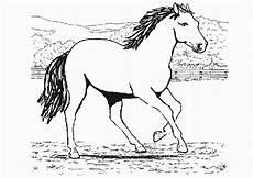 Www Pferde Ausmalbilder Zum Ausdrucken De Ausmalbilder Pferde 51 Ausmalbilder Malvorlagen