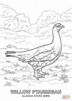 alaska animals coloring pages 16895 alabama state bird coloring page coloring home