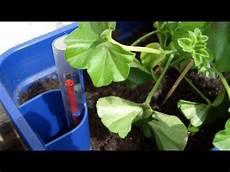 Bew 228 Sserung F 252 R Pflanzen Im Test