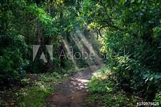 malvorlagen landschaften gratis java quot indonesien java timur kabupaten banyuwangi meru betiri