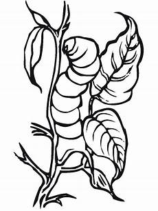 bug insect coloring pages primarygames