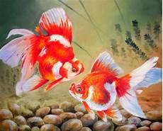 Dunia Lukisan Javadesindo Gallery Gt Gt Ikan Maskoki