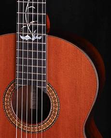Maple Guitars Acoustic Classical And Electric