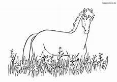 ausmalbilder pferde kostenlos 187 malvorlage pferd