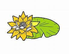 disegni fiore di loto disegno una fiore di loto colorato da utente non