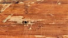 Kratzer Im Parkett Hausmittel - kratzer im laminat entfernen und tipps zum vorbeugen