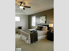 One dark neutral wall then light colors on other walls