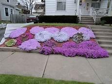 plantes vivaces pour talus les 21 meilleures images du tableau escalier jardin sur