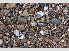 newport beach tide tables
