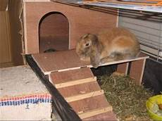 Cr 233 Ation D Une Cabane Pour Mon Lapinou Hamsters