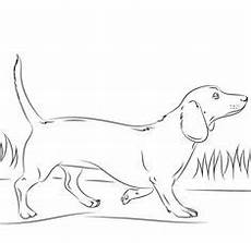 Hunde Ausmalbilder Dackel Die 15 Besten Bilder Ausmalbilder Hunde In 2018