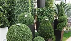 Wetterfeste Kunstpflanzen Balkon Beste Teaser Wk Comite