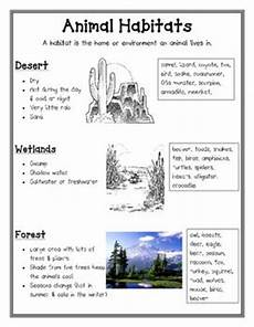 animals habits worksheets 13897 the world s catalog of ideas