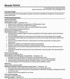 chief nursing officer resume sle nursing resumes livecareer