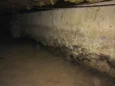nasse wand trocknen quality 1st basements basement waterproofing photo album