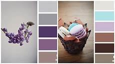taupe wandfarbe welche farbe kueche farbpalette lila