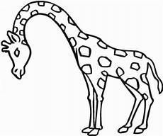 giraffe ausmalbilder kostenlos malvorlagen windowcolor zum