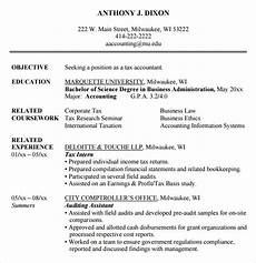 free 14 accounting resume templates in ms word apple