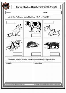 endangered animal worksheets 14298 18 best images of day and animals worksheet nocturnal animals worksheet endangered