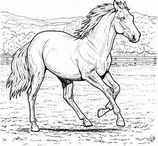 Malvorlage Pferd A4 Free Coloring Pages Coloring Pages