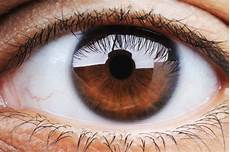 Eye Color Meaning What It Says About Health And