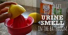 Eliminate Bathroom Urine Odor by How To Get Rid Of The Bathroom Urine Smell