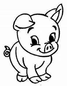 adorable baby pig coloring page coloring sky