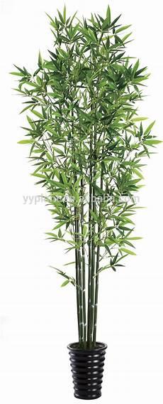 plante d intérieur haute plante d int 233 rieur haute l atelier des fleurs