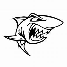 Gambar Ikan Hiu Hitam Putih Gambar Ikan Hd