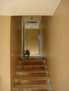 toasted wheat from behr for hallways looks bright in natural light and warm in the evening
