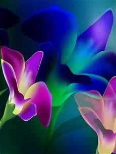 blue green flower wallpaper iphone glowing flowers wallpaper wallpaper wide hd
