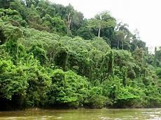 Indonesia Exotict Menghindari Kebakaran Hutan