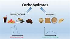 Diagram For Food That Are Carbohydrate carbe diem seize carbohydrates glycoleap