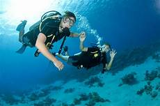 ten tips for new divers scuba diver life