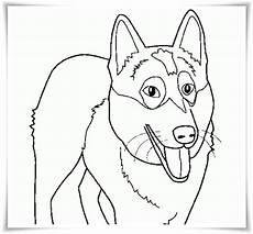 Ausmalbilder Hunde Zum Drucken Ausmalbilder Zum Ausdrucken Ausmalbilder Hunde