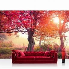 Rote Tapeten Wandgestaltung - custom wallpaper murals large wall autumn trees wall