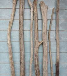 branche de bois flotté branche de bois flott 233