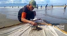 Mengenal Nyalawean Tradisi Dibalik Acara Tangkap Ikan