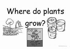 plants habitat worksheets 13564 worksheet plants worksheet grass fedjp worksheet study site