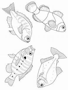 malvorlagen f 252 r fische viele verschiedene fischideen