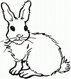 Hasen Malvorlagen Kostenlos Free Printable Rabbit Coloring Pages For Malvorlage